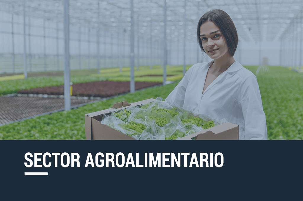 sector-agrolimentaria